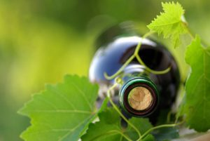 winemaking_1777274_thumb