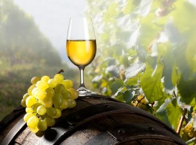 wine-barrel